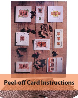 Instruction Sheet for Copper Peeloffs